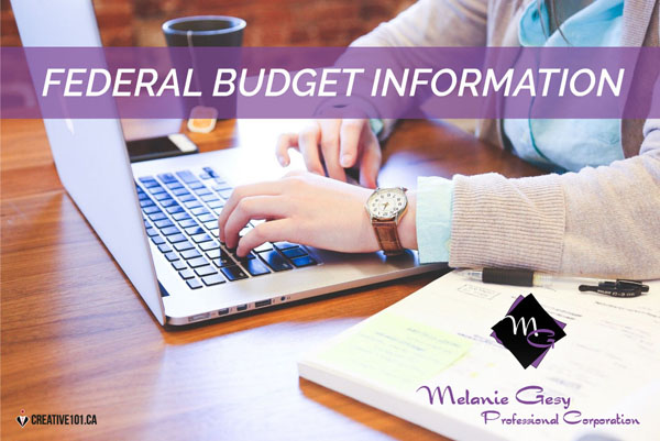 Information on the 2021 Federal Budget